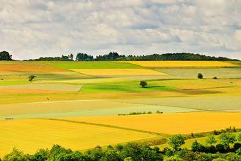 Już za dwa dni obrót ziemią rolną będzie ograniczony [© sborisov - Fotolia.com]