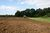 Nowelizacja ustawy o ochronie gruntów rolnych i leśnych: odrolnienie [© sauletas - Fotolia.com]