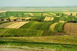 Ustawa o ochronie gruntów rolnych i leśnych - zmiany