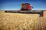 Polska branża rolna przed szansą?
