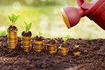 Jak inflacja wpływa na obligacje skarbowe?