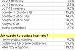 Profil polskiego internauty 2007