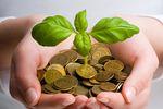 W co inwestować w 2013?