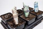 Inwestowanie pieniędzy dla początkujących