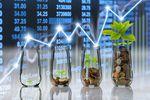 W co inwestować za granicą?