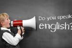 Polacy a języki obce: angielski zna tylko 17%
