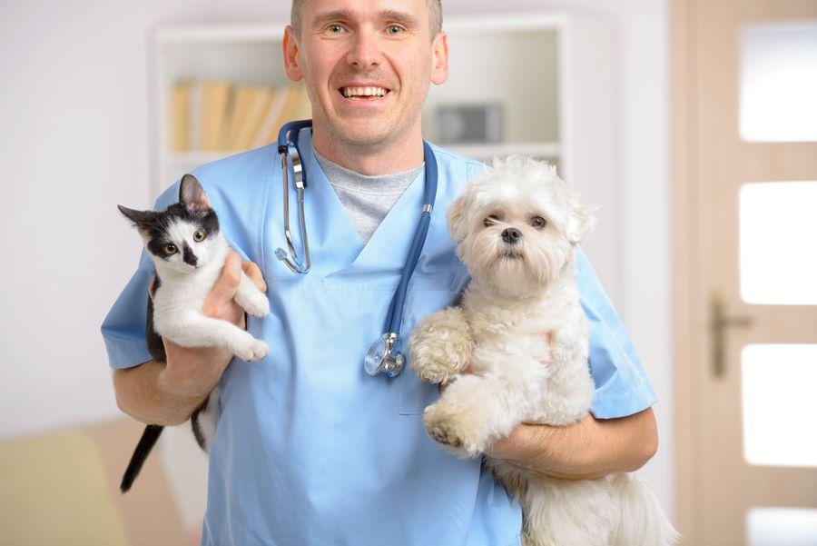 Ветеринарная лечебница