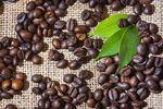 Ceny kawy wyższe o 75 procent