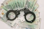 Rosną kary za wykroczenia i przestępstwa skarbowe w 2017 r.