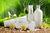 Kosmetyki wegetariańskie, wegańskie i halal - jak je rozpoznać?