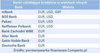 Banki udzielające kredytów w walutach obcych