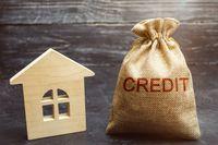 Zdolność kredytowa I 2019