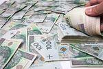 Wyłudzenia kredytów I poł. 2013 r.