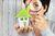 Co wpływa na cenę mieszkania? Jak porównywać oferty?