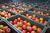 Likwidacja firmy: zwrot VAT od rozpoczętej inwestycji