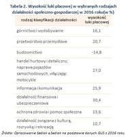 Tabela 2. Wysokość luki płacowej w wybranych rodzajach działalności społeczno-gospodarczej w 2016