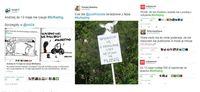 Wypowiedzi internautów na Twitterze