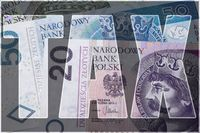 Polska rajem podatkowym… niestety dla fiskusa