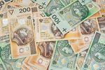Dotacje unijne: 2 mld złotych w PROW 312
