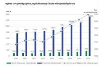 Przychody ogółem, wynik finansowy i liczba mikroprzedsiębiorstw