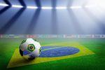 Mistrzostwa świata w piłce nożnej 2014: poradnik kibica