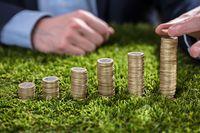 W jakie obligacje warto inwestować?