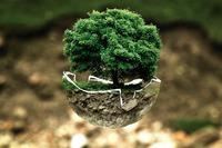 Dzień Długu Ekologicznego. Dziś zaczynamy żyć na kredyt