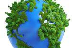 Europejczycy a stan środowiska naturalnego