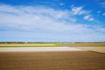 Odrolnienie gruntu - decyzje i opłaty