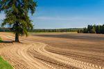 Odrolnienie gruntu - nowe zasady