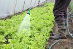 BGŻ wprowadza kredyt inwestycyjny dla rolników