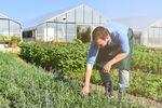 Nowe kredyty dla rolników w BGŻ BNP Paribas