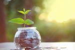 5 sposobów na oszczędzanie pieniędzy w Nowym Roku