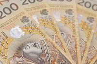 ZFDF: uwaga na parabanki i piramidy finansowe