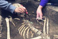 Ludzkie szczątki na placu budowy
