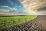 Jedynie zakup gruntu (gospodarstwa) rolnego zwolniony z PCC