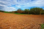Grunt rolny: sprzedaż w podatku dochodowym
