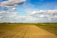Zapłacisz CIT od dzierżawy pola