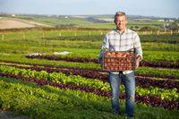 Kiedy podatek dochodowy płaci rolnik?