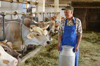 Przy działalności rolniczej dokumentacja podatkowa nie jest wymagana