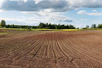 Podział i sprzedaż gospodarstwa rolnego w podatku VAT