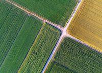 Dzielisz grunty i występujesz o warunki zabudowy? Zapłacisz VAT przy ich sprzedaży