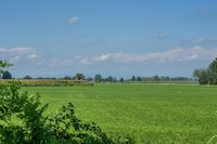 Sprzedaż już jednej działki gruntu może być opodatkowana VAT