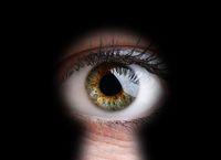 Prowadzenie firmy jak udział w Big Brother