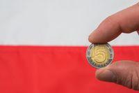 MFW oczekuje problemów fiskalnych w Polsce?
