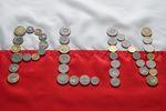 Polska gospodarka i złotówka w 2018 roku. A co czeka nas w 2019 r.?