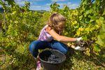 Praca wakacyjna w podatku dochodowym dziecka i rodzica
