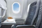 Przewóz zwierząt samolotem: co na to linie lotnicze?