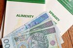 Dobrowolne/przymusowe alimenty w zeznaniu podatkowym PIT 2014