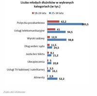 Liczba młodych dłużników w wybranych kategoriach